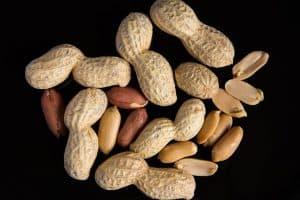 plantar cacahuetes