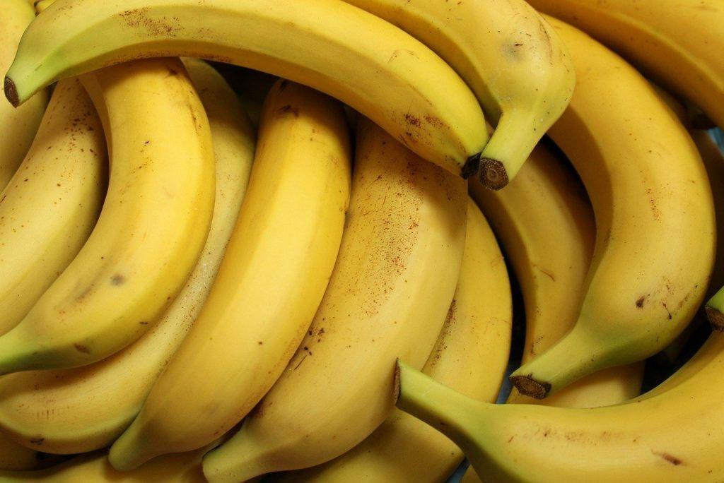 Plagas y enfermedades de los plátanos
