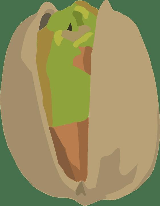 qué necesitamos para sembrar pistacho