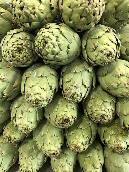 sembrar alcachofas 4
