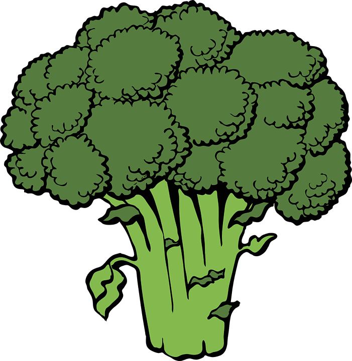 sembrar brocoli 6