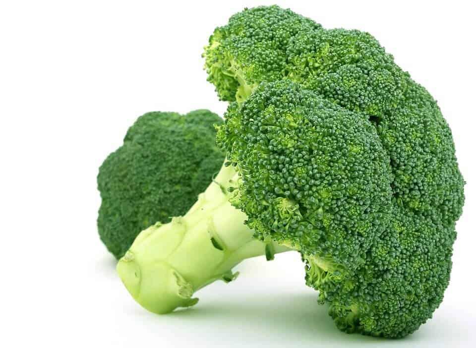 sembrar brocoli 7