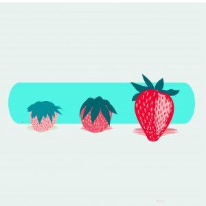 abonar la fresa