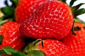 abonar sembrar fresas 7