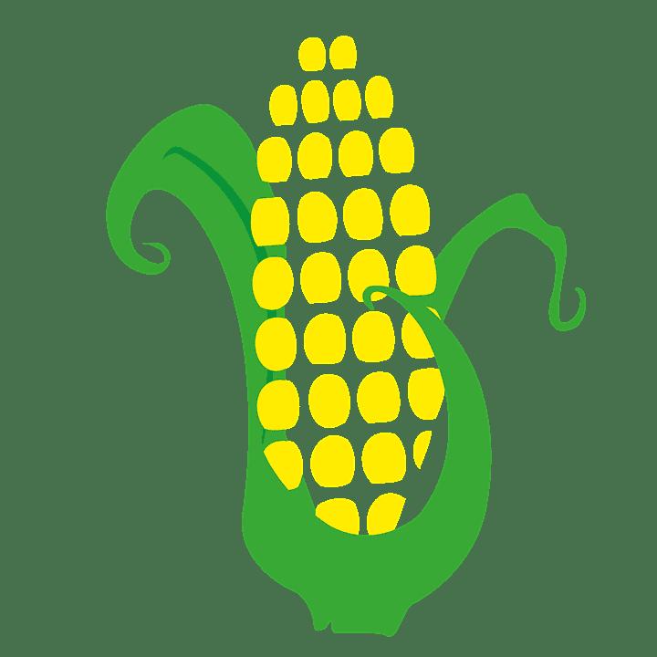 sembrar maíz 6