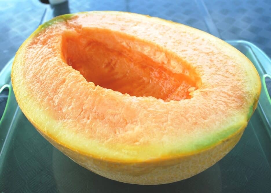 sembrar melones 6