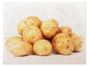 sembrar patatas tubérculo