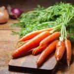 Sembrar Zanahorias: [Fecha, Riego, Sustrato, Cuidados, Cosecha y Plagas]