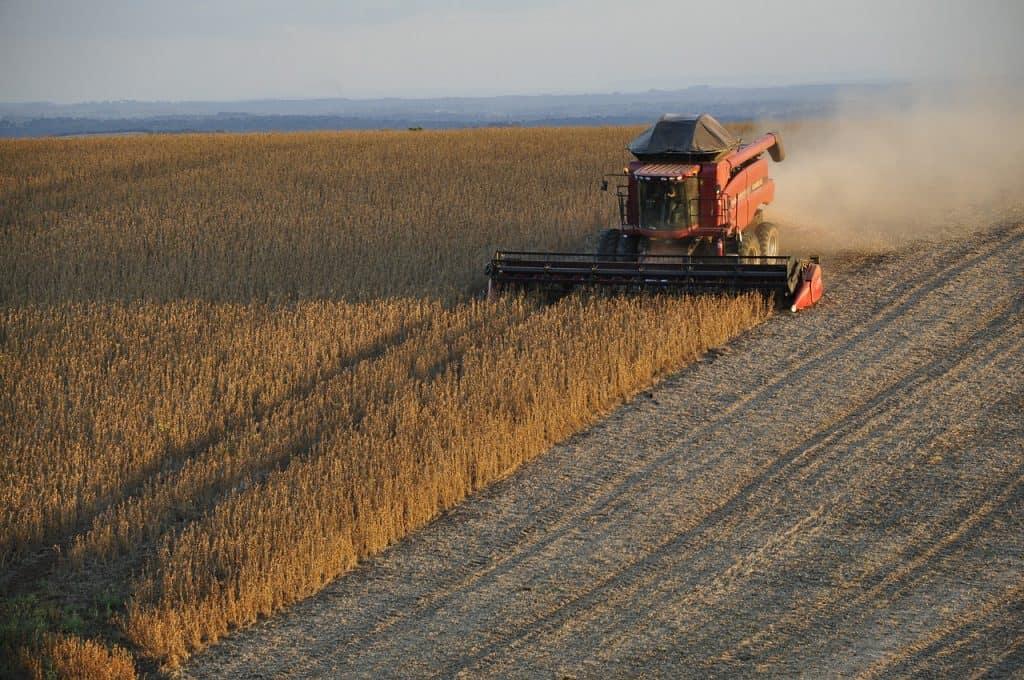 cómo cosechar soja