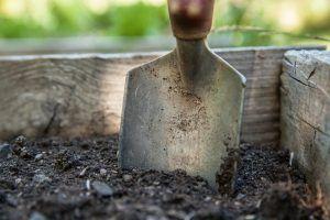 En la restauración y fertilización de los suelos