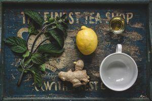Cómo sembrar la planta del té verde