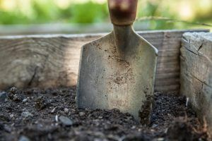 Cómo preparar la tierra