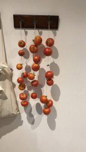 tomates de ramallete o mallorquines
