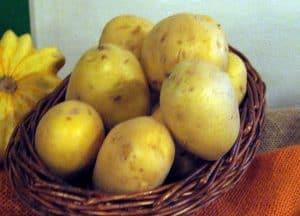 variedades de patatas agrica