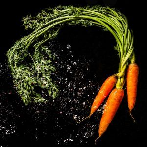 cómo plantar zanahorias