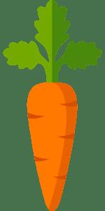 Características de las zanahorias