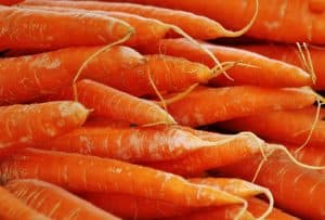 Variedades de calabazas - Zanahorias danver